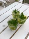 sommarens godaste drink - mojito