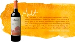 Fetzer-Vineyards-Our-Wines-Merlot