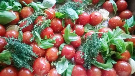 Tomater till rostning